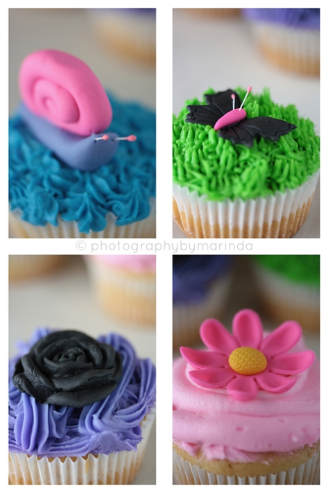 ladybird cake, cake decorating, cake decorating class in pretoria, speciality cakes,